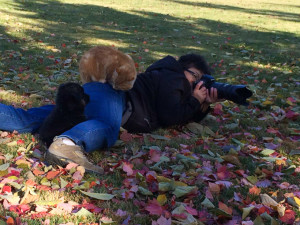 Cat-on-back-of-photographer-2013-(1-of-1)