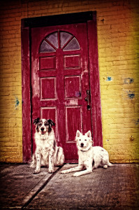 Daedra&JoeJoe-red-door-kindwords